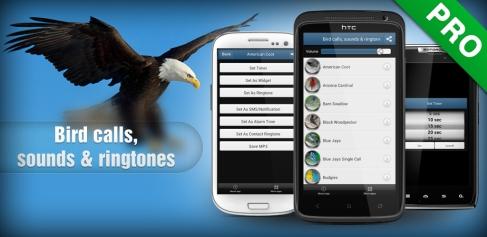 Fågelläten App Android